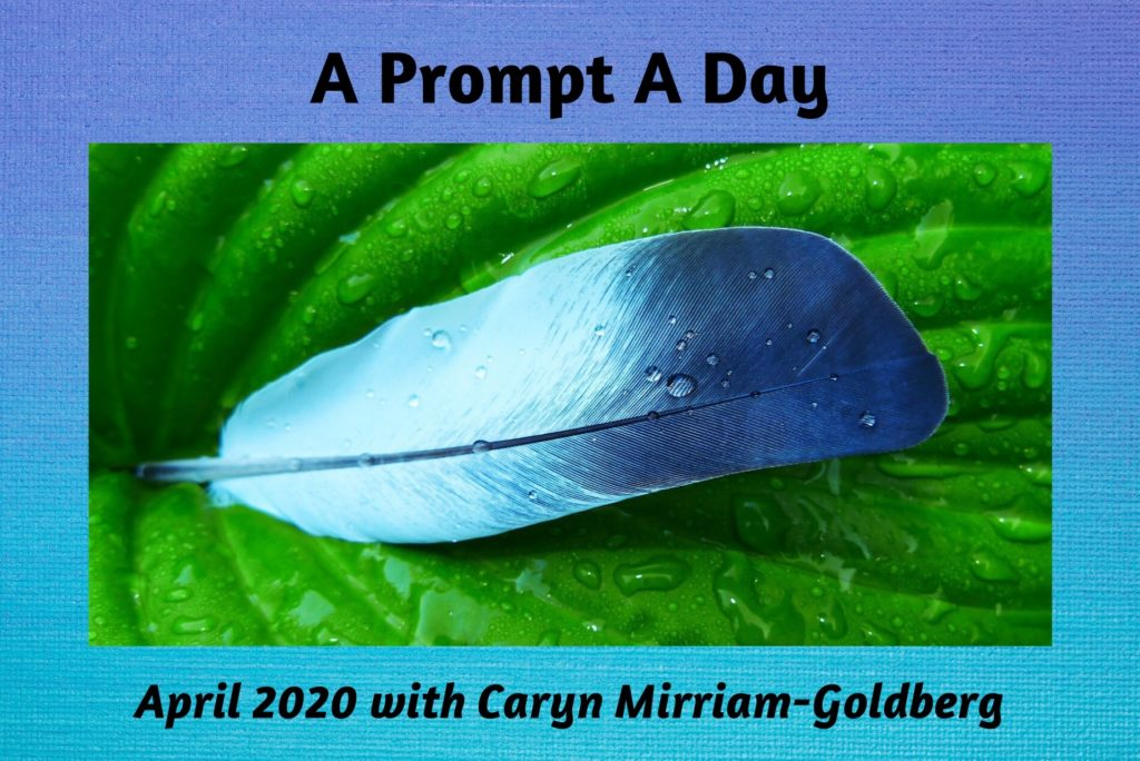 A Prompt A Day